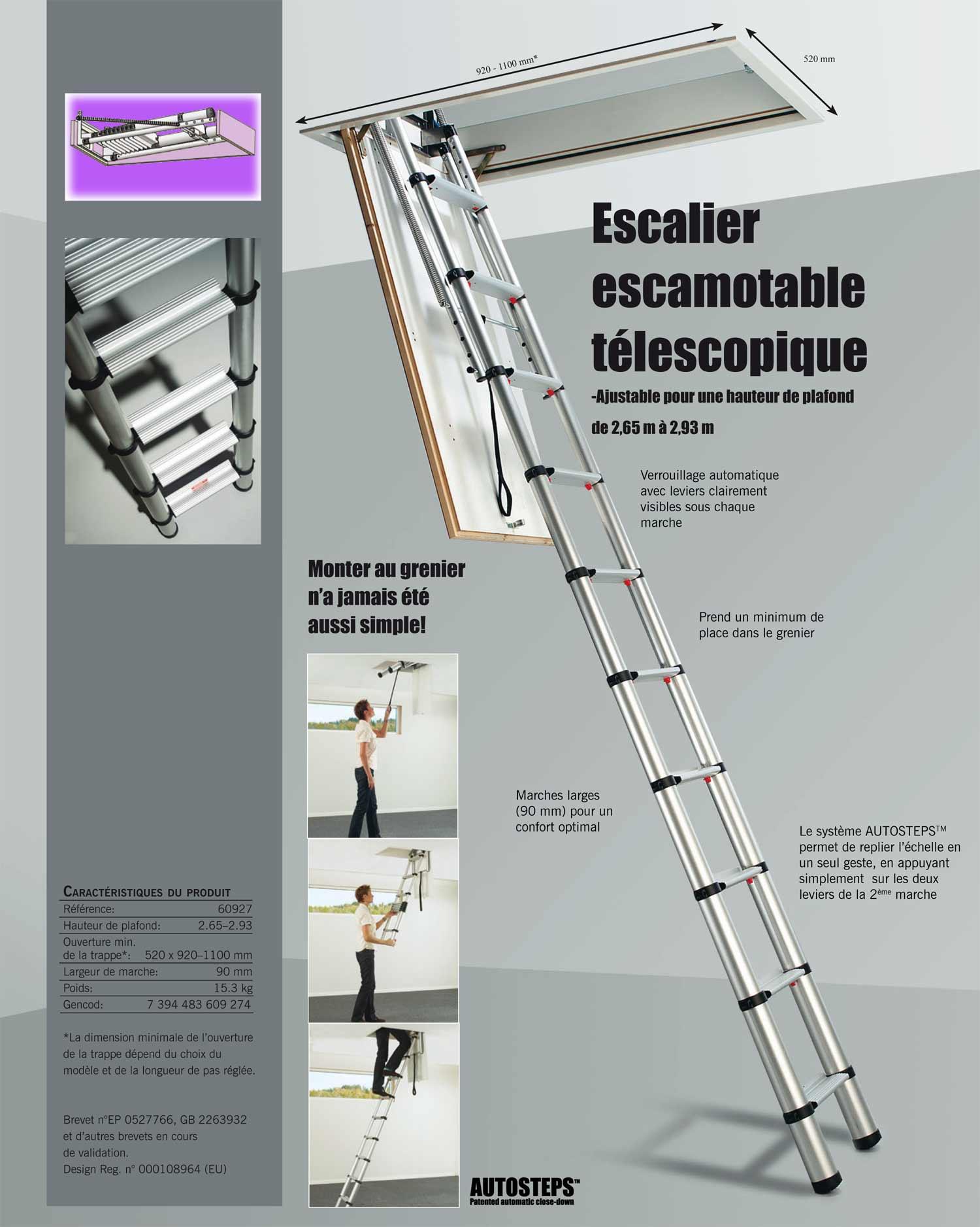 Nouveau les échelles télescopiques de grenier à marches plates et pour ZN-27